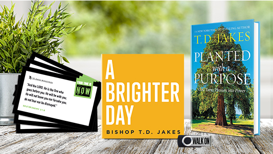 Monthly TV Offer - August 2020 - A Brighter Day